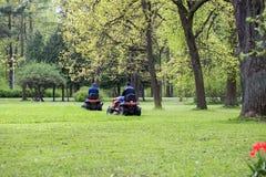 Deux hommes dans les tondeuses à gazon fauchées par parc Images libres de droits