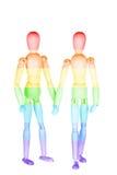 Deux hommes en bois d'arc-en-ciel petits image libre de droits