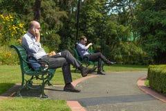 Deux hommes prenant le déjeuner chez Anzac Park, Nelson images libres de droits