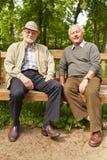 Deux hommes supérieurs s'asseyant sur un banc de parc Photographie stock libre de droits