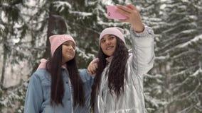 Deux jeunes amies dans des vêtements d'hiver font le selfie dans la perspective de la forêt d'hiver utilisant un smartphone 4K clips vidéos