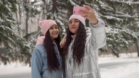 Deux jeunes amies dans des vêtements d'hiver prenant le selfie dans la perspective de la forêt d'hiver utilisant un smartphone et clips vidéos