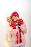 Deux jeunes amies de l'hiver dans les gants Image stock