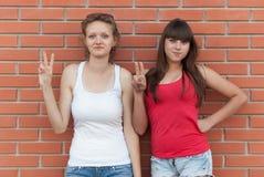 Deux jeunes amis ayant l'amusement dehors Photo stock