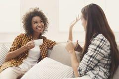 Deux jeunes amis féminins avec du café conversant Images stock