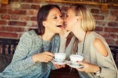 Deux jeunes amis féminins bavardant dans une barre Image libre de droits