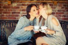 Deux jeunes amis féminins bavardant dans une barre Photographie stock
