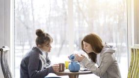 Deux jeunes amis féminins buvant du thé dans un café Photos stock
