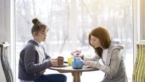 Deux jeunes amis féminins buvant du thé dans un café Images libres de droits