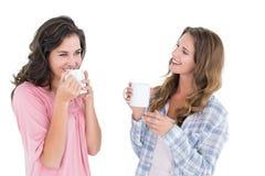 Deux jeunes amis féminins de sourire buvant du café Photo stock