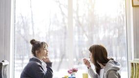 Deux jeunes amis féminins mangeant et buvant du thé dans un café Image stock