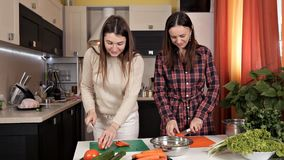 Deux jeunes belles filles préparent une salade végétale dans la cuisine, ont l'amusement parlant et riant Deux soeurs préparent a banque de vidéos