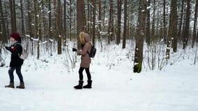 Deux jeunes et femmes attirantes buvant du thé du thermos dans la forêt clips vidéos