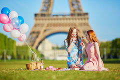 Deux jeunes femmes ayant le pique-nique près de Tour Eiffel à Paris, France Images libres de droits