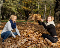 Deux jeunes femmes caucasiennes jetant des feuilles de jaune Photographie stock libre de droits