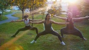 Deux jeunes femmes faisant des asanas de yoga avec l'entraîneur en parc à la lumière du soleil - une femme a de longs dreadlocks  banque de vidéos