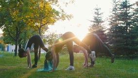 Deux jeunes femmes faisant des asanas de yoga avec l'entraîneur en parc au soleil - une femme a de longs dreadlocks bleus clips vidéos