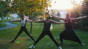 Deux jeunes femmes faisant des asanas de yoga avec l'entraîneur en parc dans les rayons du soleil - une femme a de longs dreadloc banque de vidéos