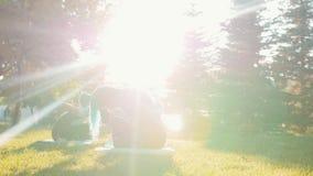 Deux jeunes femmes faisant des exercices de yoga avec l'entraîneur en parc à la lumière du soleil - une femme a de longs dreadloc banque de vidéos