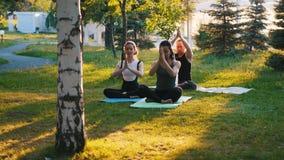 Deux jeunes femmes faisant des exercices de yoga avec l'entraîneur en parc dans les rayons du soleil - une femme a longtemps bleu banque de vidéos