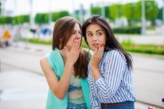 Deux jeunes femmes parlant entre eux photographie stock libre de droits