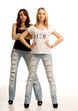 Deux jeunes femmes sexy avec l'assiette Photo stock