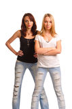 Deux jeunes femmes sexy avec l'assiette Image stock