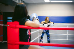 Deux jeunes femmes sportives de physique dans le gymnase photo libre de droits