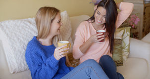 Deux jeunes femmes vivaces heureuses Photographie stock libre de droits