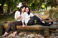 Deux jeunes filles mignonnes s'asseyant sur des rondins buvant du vin Photos libres de droits