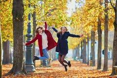 Deux jeunes filles un jour ensoleillé d'automne Images stock