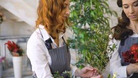 Deux jeunes fleuristes beaux de chef travaillent aux fleurs portent des fruits boutique faisant le bouquet de fruits et légumes clips vidéos