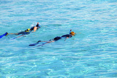 Deux jeunes hommes de sports avec les nageoires, le masque et le tube Photographie stock