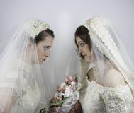 Deux jeunes jeunes mariées regardant fixement l'un l'autre Photographie stock libre de droits
