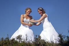 Deux jeunes mariées avec la boule de rugby sur le fond de ciel bleu Images stock