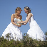Deux jeunes mariées avec la boule de rugby sur le fond de ciel bleu Photos stock