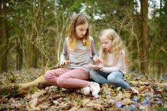 Deux jeunes soeurs mignonnes ayant l'amusement pendant la hausse de for?t la belle journ?e de printemps t?t Loisirs actifs de fam image stock