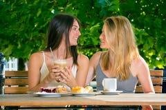 Deux jolies amies de femmes Images libres de droits