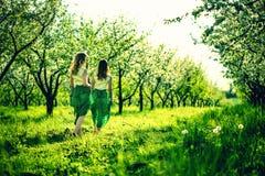 Deux jolies filles heureuses marchant sur les pommiers font du jardinage Photos stock