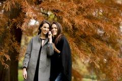 Deux jolies jeunes femmes à l'aide du téléphone portable images stock