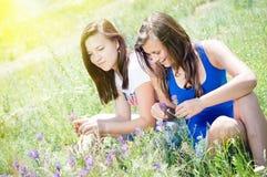 Deux jolis amis heureux jouant dans l'herbe verte Photos stock