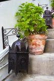 Deux lanternes un pot sur une échelle Photo libre de droits