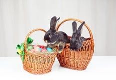 Deux lapins dans un panier à côté d'un panier avec des oeufs de pâques Photo stock