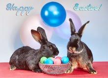 Deux lapins près d'un vase avec des oeufs de pâques sur un fond des ballons Images libres de droits