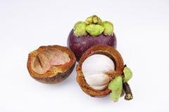 Deux mûrissent des mangoustans Image stock