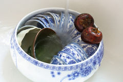 Deux macres communes et un pot de tasse de thé Image stock