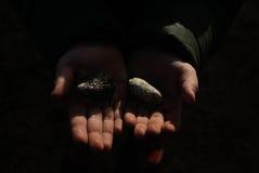 Deux mains Photographie stock