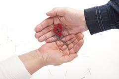 Deux mains avec le coeur et les pointeaux Photos libres de droits