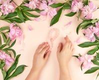 deux mains d'une jeune fille avec la peau lisse et d'un bouquet des pivoines roses image libre de droits
