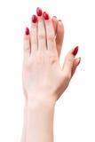 Deux mains de femme ont appuyé des paumes entre eux Image stock